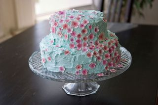 Cake@blog.craftzine