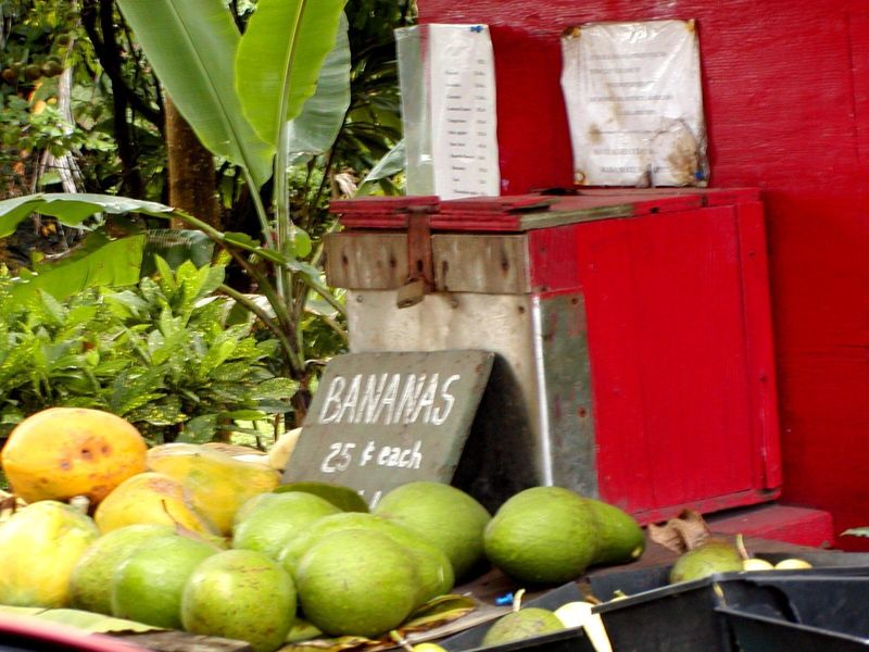 Hawaii-fruit-stand@worldisround