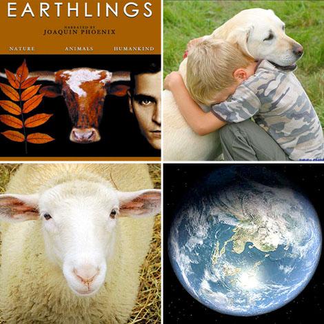 Earthlings-documentary-film-bohocircus