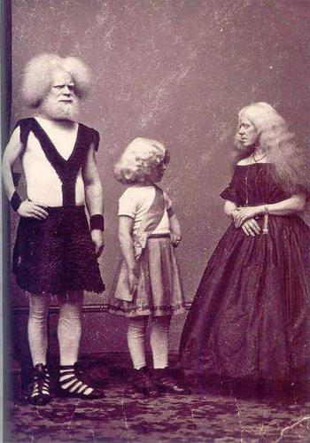 Albino-family-bohocircus