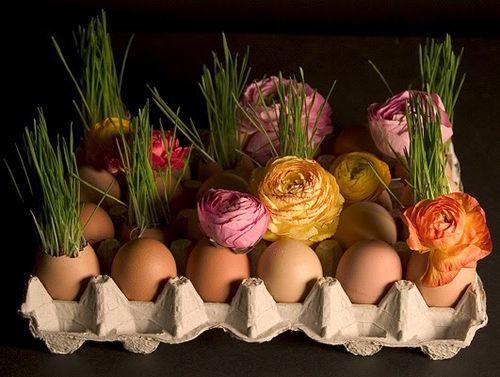Easter-Eggs-bohocircus