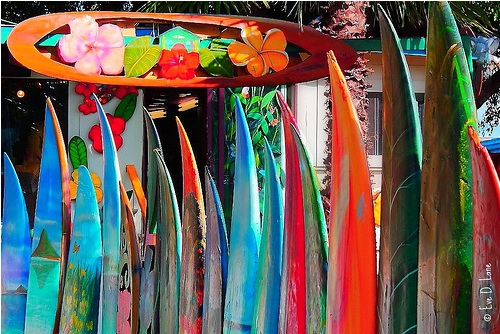 Summer-surfboards-boho-bohocircus