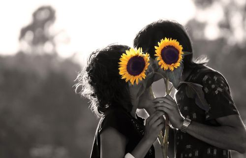 Sunflower-kiss-knoblock-bohocircus