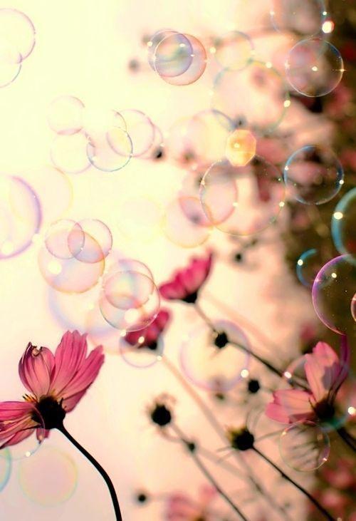 Bubbles bohocircus