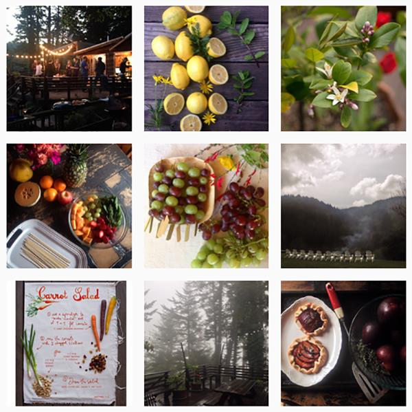 Erin gleeson instagram