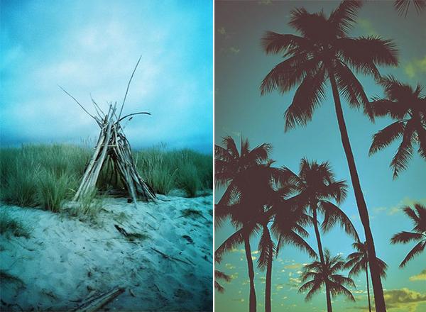 Bohocircus palms tipi